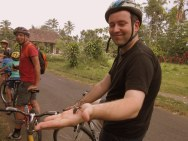 Ubud - Bike Tour, BIG spiders free of charge! ;)